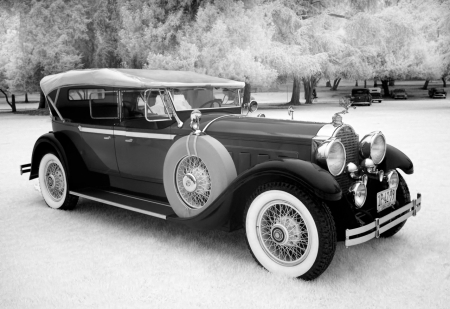 1929 packard phaeton saloon - saloon, grass, phaeton, car, packard