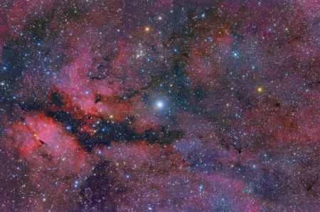 Central Cygnus Skyscape - planet, space, stars, fun, cool, galaxies