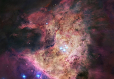 Trapezium At the Heart of Orion - stars, cool, planet, space, fun, galaxies