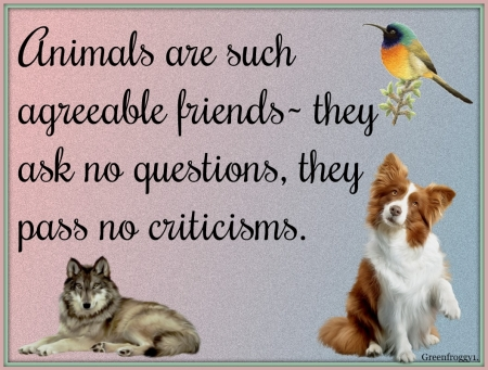 AGREEABLE ANIMALS - COMMENT, ANIMALS, AGREEABLE, CARD