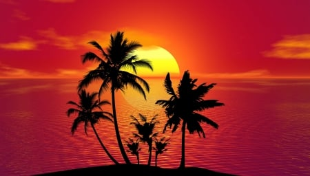 Tropical summer - Palm trees, Summer, Silhouette, Sunset