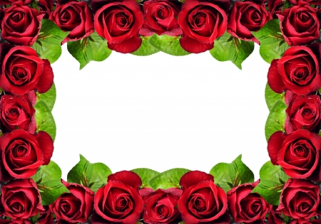 :-) - red, rose, frame, texture, flower