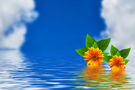 Flowers - Water, Flowers, Sky, Clouds