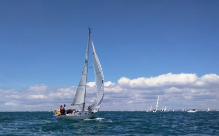Sailing - yachts, sailing, sea, sailboats