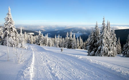 Desktop background images winter
