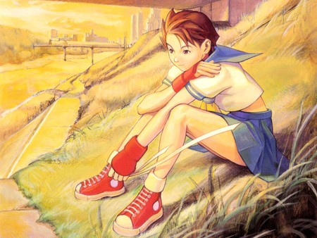 After School Street Fighter Video Games Background Wallpapers On