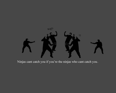 Ninjas can't catch you if you're the ninjas they can't catch