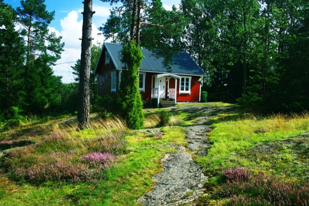 Holiday House - forest, red, house, holiday, summer, wood