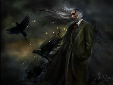 Gothic man - raven, fantasy, gothic, night