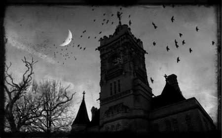Gothic castle - gothic, castle, night, ravens