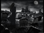 Moonlit cemetry