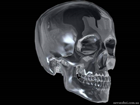 The glass skull - gothic, horror, spooky, skull