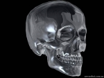 The glass skull
