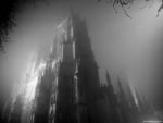 Shadowy gothic castle in the mist