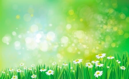 Spring flowers flowers nature background wallpapers on desktop spring flowers mightylinksfo
