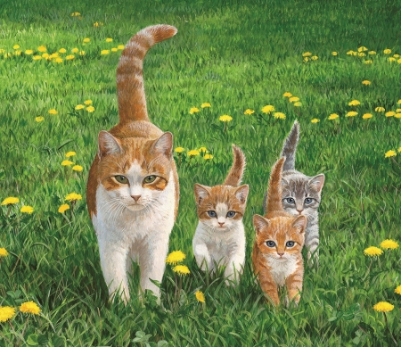Image result for cat family