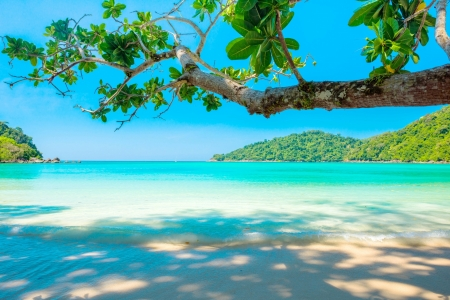 Summer Beach Beaches Nature Background Wallpapers On