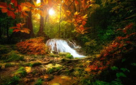 Forest waterfall - forest, autumn, wterfall, rays, beautiful, trees