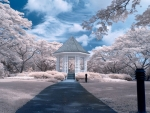 Beautiful Park Gazebo in Winter