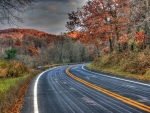A Bend in the Road in Autumn