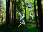 Forest Fairies