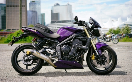 Triumph Speed Triple - side view, purple, vehicles, motorcycles, Triumph Speed Triple
