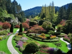 Butchart Gardens and trees