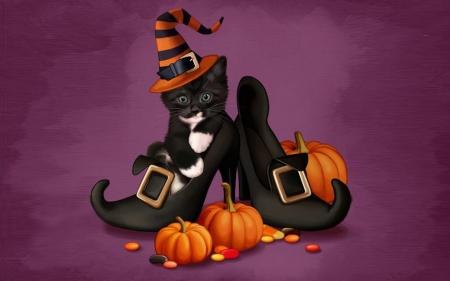 Halloween Kitty Cats Animals Background Wallpapers On Desktop Nexus Image 2415967
