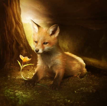The Little Fox And The Flower Fantasy Abstract