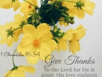 Give Thank For Lord