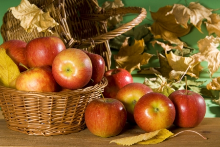 Apples - photo, fruit, food, apples
