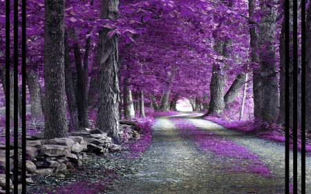 Purple Forest - forest, fantasy, abstract, purple, art