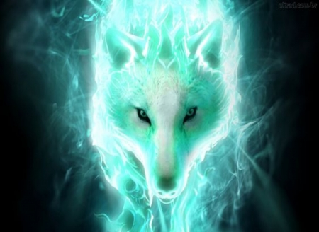 Fantasy Wolf Pet Fantasy Abstract Background Wallpapers