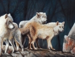 Wolves in Rocks