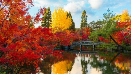 Fall by the lake - Water, Fall, Forest, Trees, Bridge, Lake, Autumn
