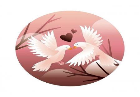 Dove Couple In Love Birds Animals Background Wallpapers On Desktop Nexus Image 2419782