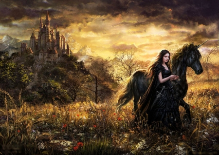 From The Castle - art, girl, unicorn, flowers, black, horse, clouds, sky
