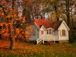 cottage in a fall forest