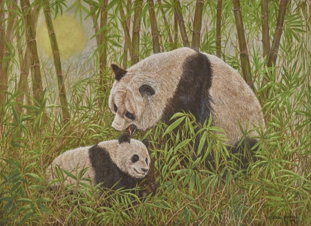 PandaLove - bears, paint, animal, love
