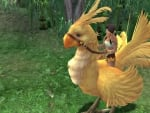 Chocobo Carrying Cali Final Fantasy Game