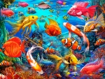 Colorful Sea Life