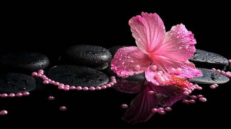 hibiscus and pearls - decoration, still life, cool, photography, flowers, spa, pearls, pink