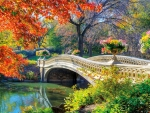 Romantic Autumn Flowers Bridge