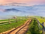 Dirt Road in Foggy Country Landscape