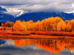 Fall on a lake
