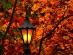 lamplighter in the fall park