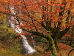 Waterfall in Gorbea National Park in Autumn