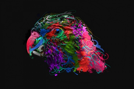 Remarkable Parrot Abstract Birds Animals Background Wallpapers On Download Free Architecture Designs Embacsunscenecom