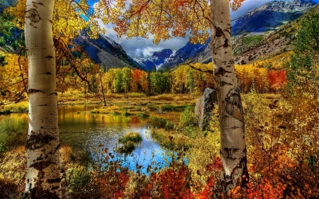 fall mountains forests nature background wallpapers on desktop