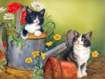 kittens with a watering can